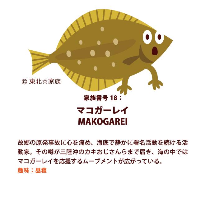 マコガーレイは海底の思想家